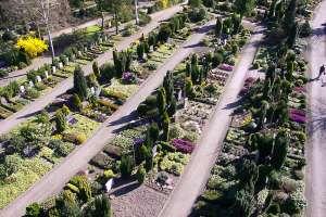 Friedhof7.jpg