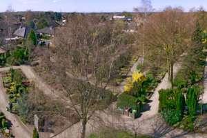 Friedhofspanorama2.jpg