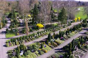 Friedhof6.jpg