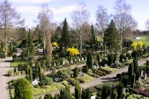 Friedhof3.jpg