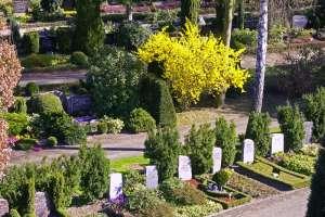Friedhof4.jpg